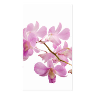 Hot Pink Dendrobium Orchid Flower Orchids Template Pack Of Standard Business Cards