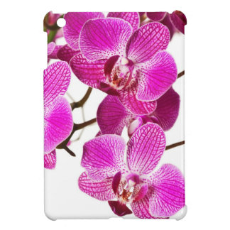 Hot Pink Dendrobium Orchid - Orchids Background Cover For The iPad Mini