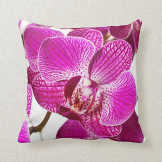 Hot Pink Dendrobium Orchid - Orchids Background Cushions