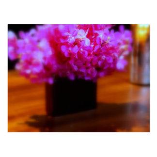 Hot Pink Flowers Postcard