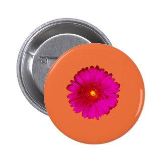 Hot Pink Gerbera Daisy on Orange 6 Cm Round Badge