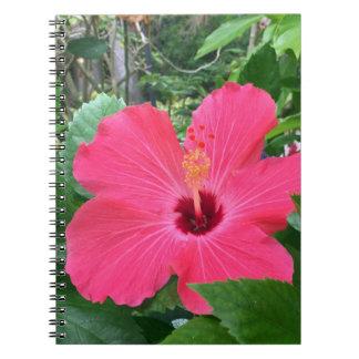Hot Pink Hibiscus Spiral Notebooks