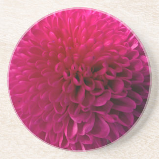 Hot pink macro flower coaster