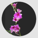 hot pink orchids stickers