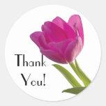 Hot Pink Tulip, Thank You! Round Sticker