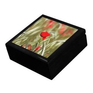 Hot Poppy Large Square Gift Box
