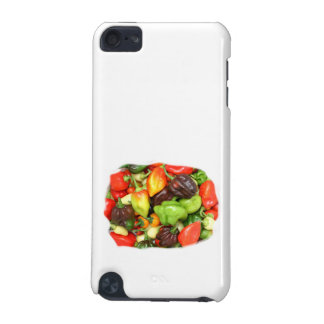Hot Spicy Peppers Different Species, Spice it up! iPod Touch 5G Cover