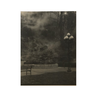 Hot Springs AR Wood Poster
