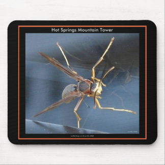 Hot Springs Mountain Wasp Gift & Aparel Mousemat
