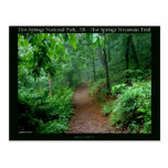 Hot Springs National Park, AR Fading Fog Gifts Postcard