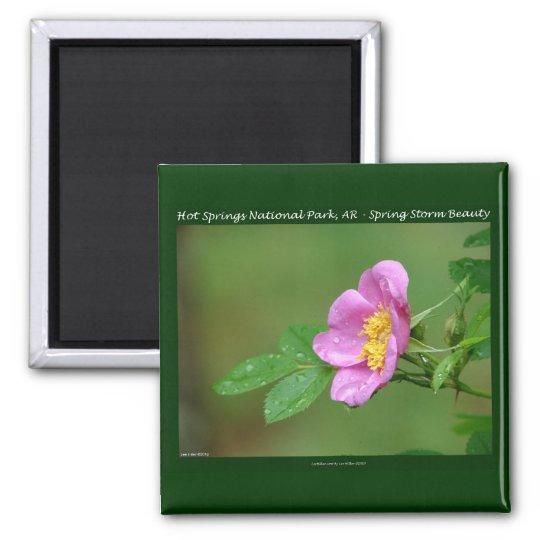 Hot Springs National Park, AR  Wild Rose Gifts Magnet