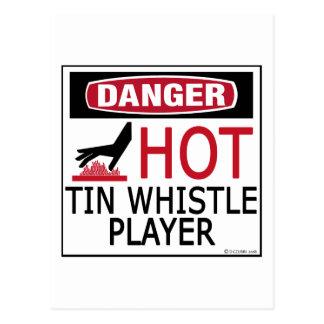 Hot Tin Whistle Player Postcard