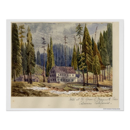 Hotel at the Grove of Mamoth Trees Poster