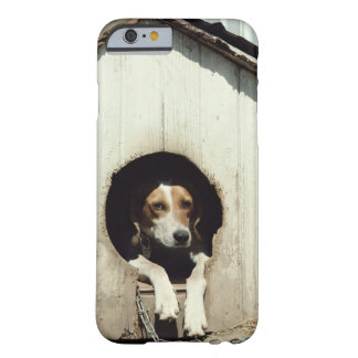 Hound dog in dog house barely there iPhone 6 case