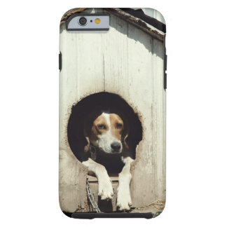 Hound dog in dog house tough iPhone 6 case