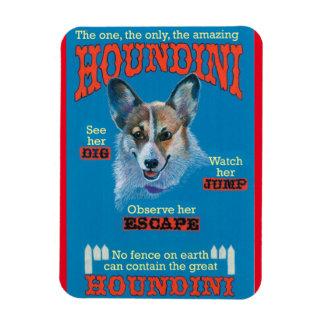 Houndini Magnet
