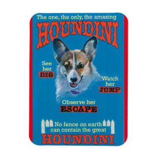 Houndini Rectangular Photo Magnet