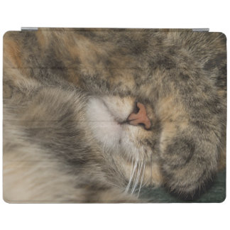 House cat covering eyes while sleeping iPad cover