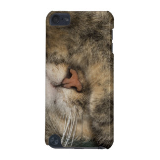 House cat covering eyes while sleeping iPod touch (5th generation) case