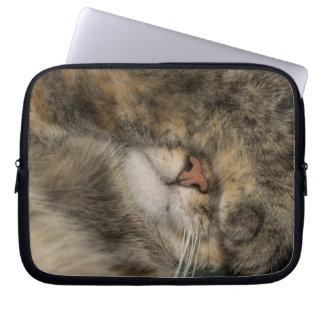 House cat covering eyes while sleeping laptop sleeve