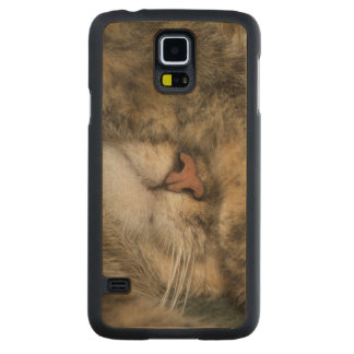 House cat covering eyes while sleeping maple galaxy s5 case