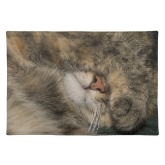 House cat covering eyes while sleeping placemat