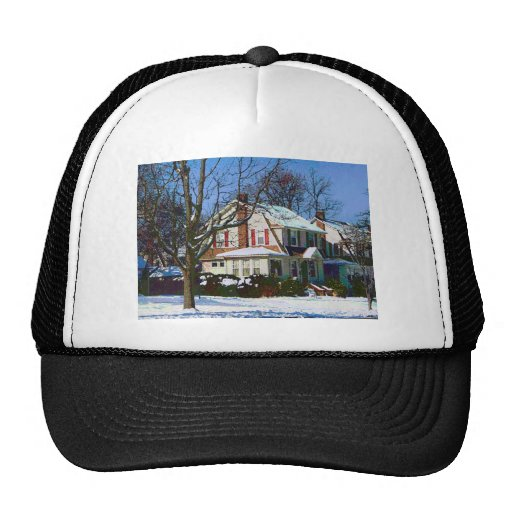 House Down the Street in Winter Hat