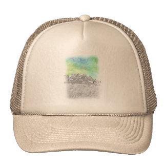 House drawing mesh hats