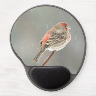 House Finch on a Branch Gel Mouse Mats