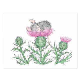 House-Mouse Designs® - Postcard