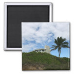 House on Hill with sky and palm tree in Florida Fridge Magnet