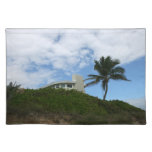 House on Hill with sky and palm tree in Florida Placemats