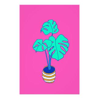 House Plant 01 Art Photo