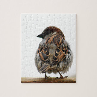 House sparrow jigsaw puzzle