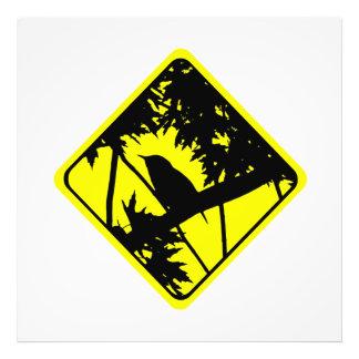 House Wren Warning Sign Love Bird Watching Photograph
