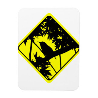 House Wren Warning Sign Love Bird Watching Rectangular Photo Magnet