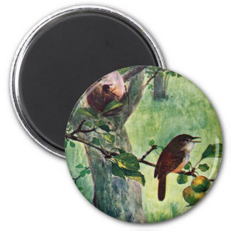 House Wrens Nesting in an Apple Tree 6 Cm Round Magnet