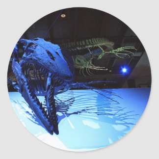 Houston Museum of Natural Science Round Sticker