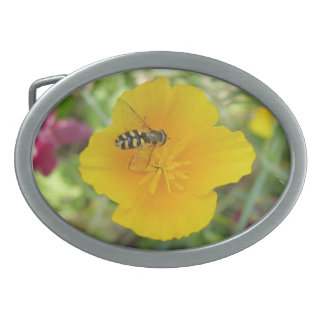 Hoverfly and Californian Poppy Belt Buckle