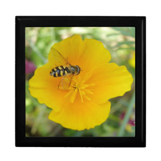 Hoverfly and Californian Poppy Gift Box