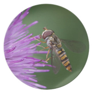 Hoverfly and Flower Plate