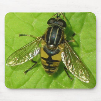 Hoverfly mouse mat