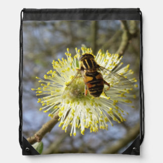 Hoverfly On Willow Blossom Cinch Bags