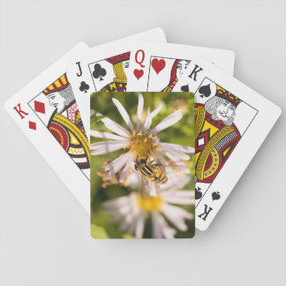 Hoverfly Playing Cards