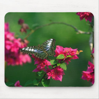 Hovering butterfly on a pink flower mouse pad