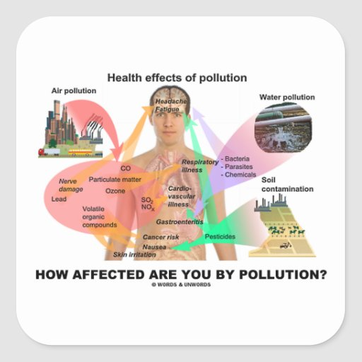 How Affected Are You By Pollution? (Physiology) Stickers