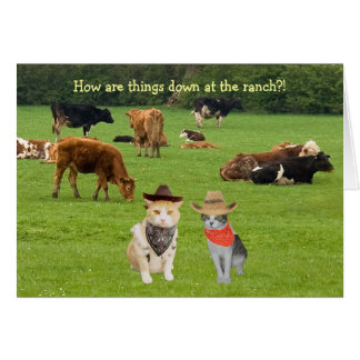 How are things down at the ranch?! greeting card
