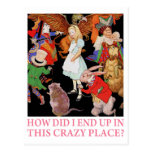 HOW DID I END UP IN THIS CRAZY PLACE? POSTCARD