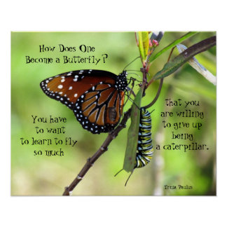How Does One Become a Butterfly Quote Poster