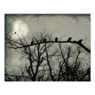 How Many Crows Can You Find Photo Print